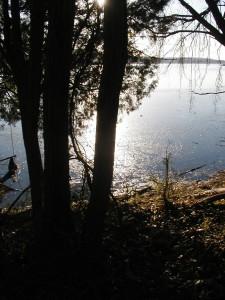 Winter Dinner/Dance - Christmas in April @ Clinton Moose Lodge